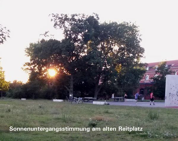 Sonnenuntergangsstimmung am alten Reitplatz
